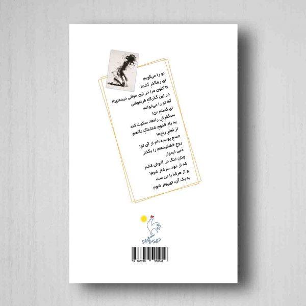 پشت طغیان و هذیان - روشنک محمدی