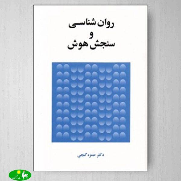 روانشناسی و سنجش هوش حمزه گنجی انتشارات ساوالان